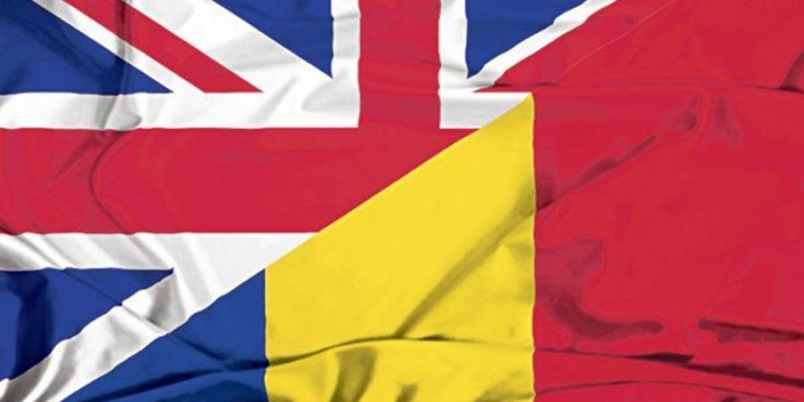 Consultare cu românii din Marea Britanie. Guvernul vrea să ştie cum negociază Brexitul